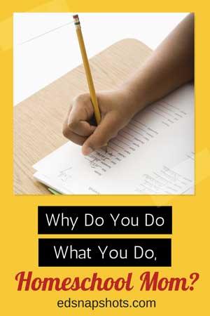 Why do you do what you do, homeschool mom? |everyday snapshots