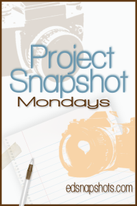 Project Snapshot April