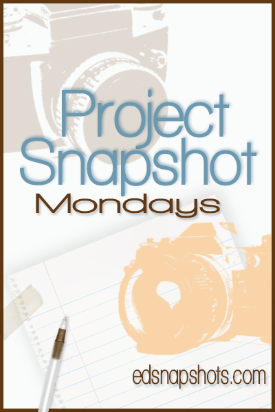 Project Snapshot {April}