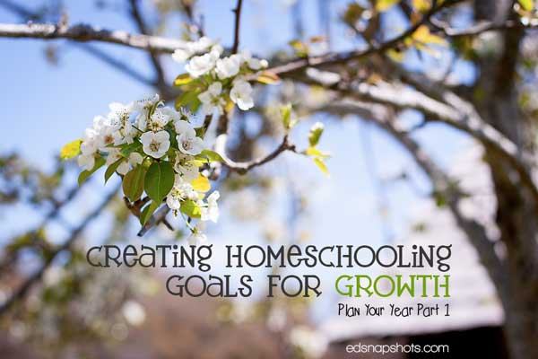 Creating Homeschooling Goals for Growth: Plan Your Year Part 1