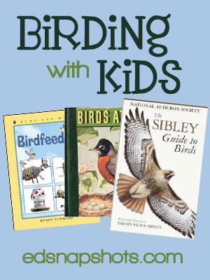 Birding with Kids
