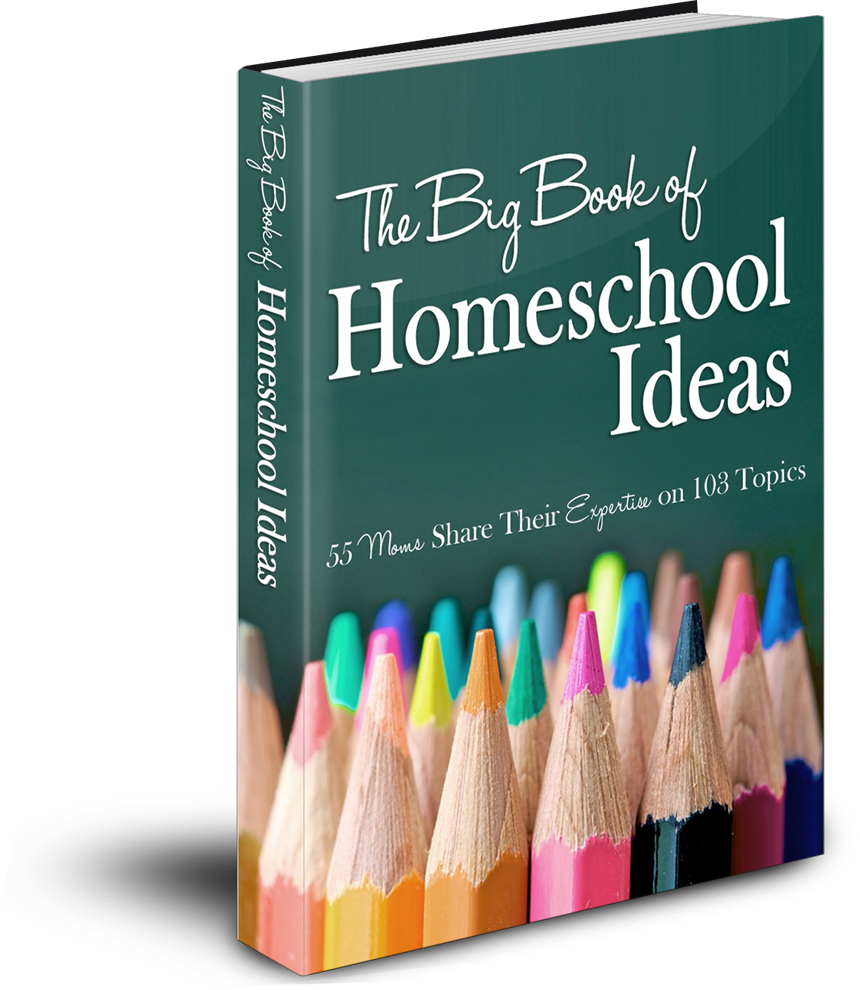 Big Book of Homeschool Ideas On Sale NOW!