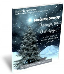 Christmas Learning with Advent Nature Study