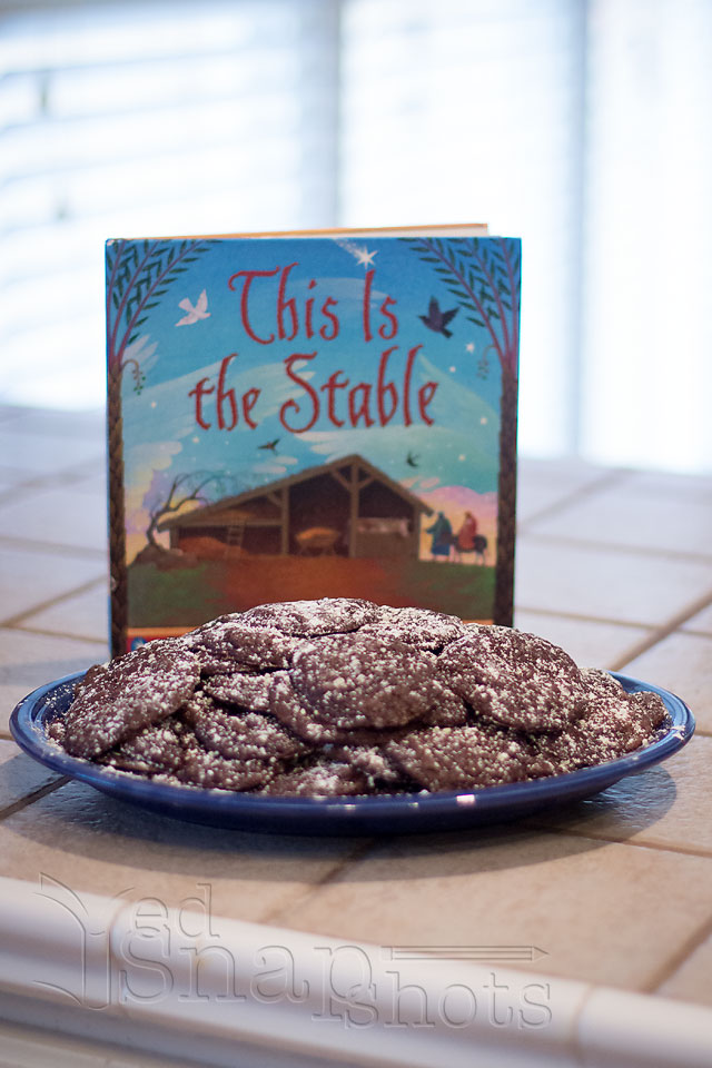 Christmas Picture Book Cookie Exchange Stable