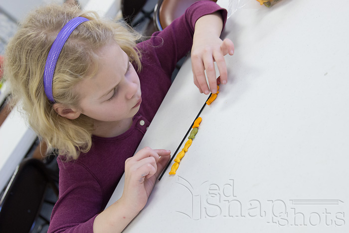 8 Fun Munchy Math Activities Measuring