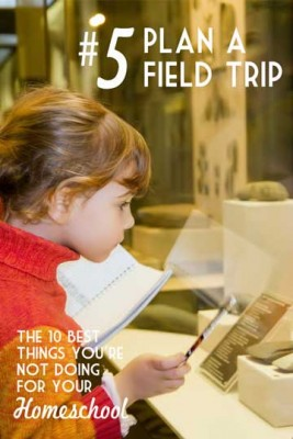 More Field Trips - The 10 Best Things You're Not Doing for your Homeschool