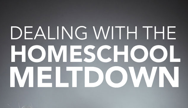Dealing With the Homeschool Meltdown