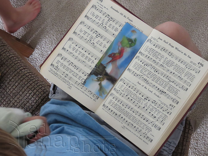 homeschool hymn study hymnal