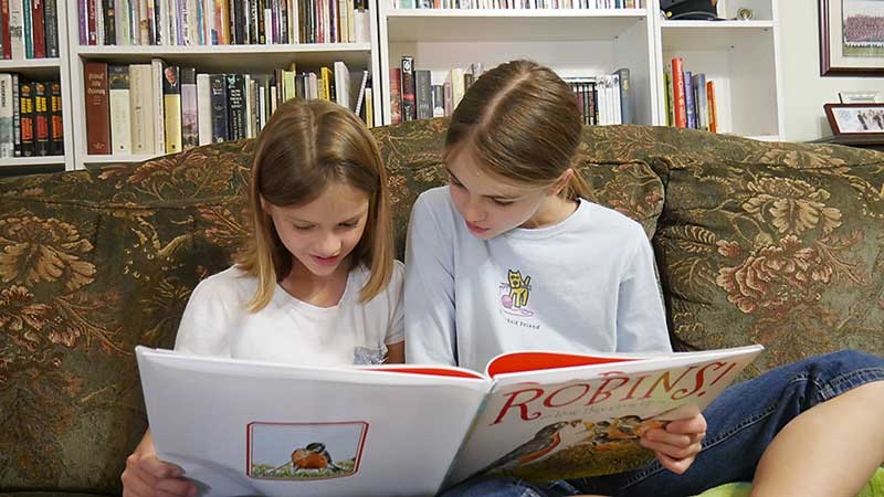 Picture Books Aren't Just for Preschoolers Reading