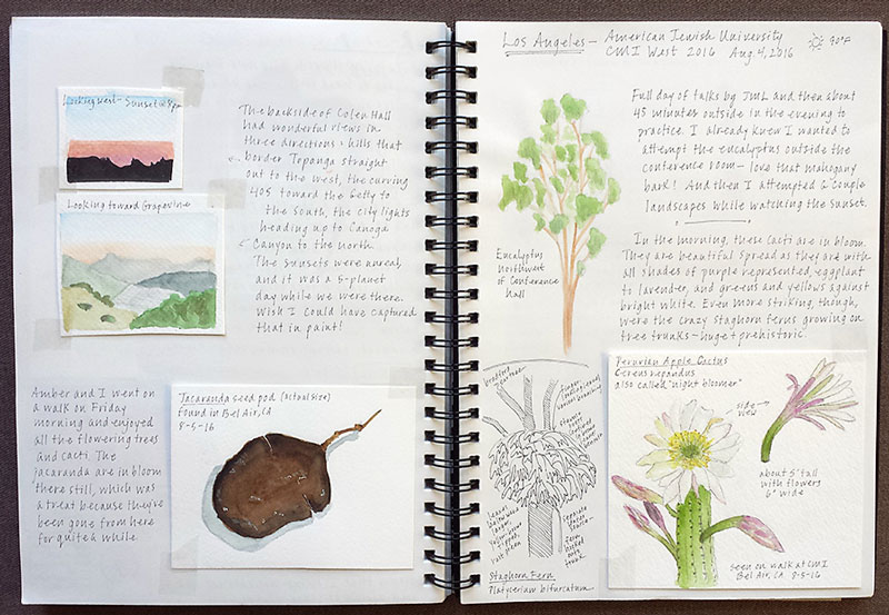 Hobbies for Mom Nature Journaling sketches