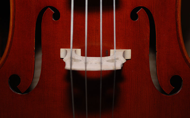Cello with Kay Pelham: Learning, Knowing, Creating Hobbies for Homeschool Moms