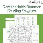 Summer Reading Program Pin