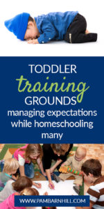 Managing Expectations While Homeschooling Pin