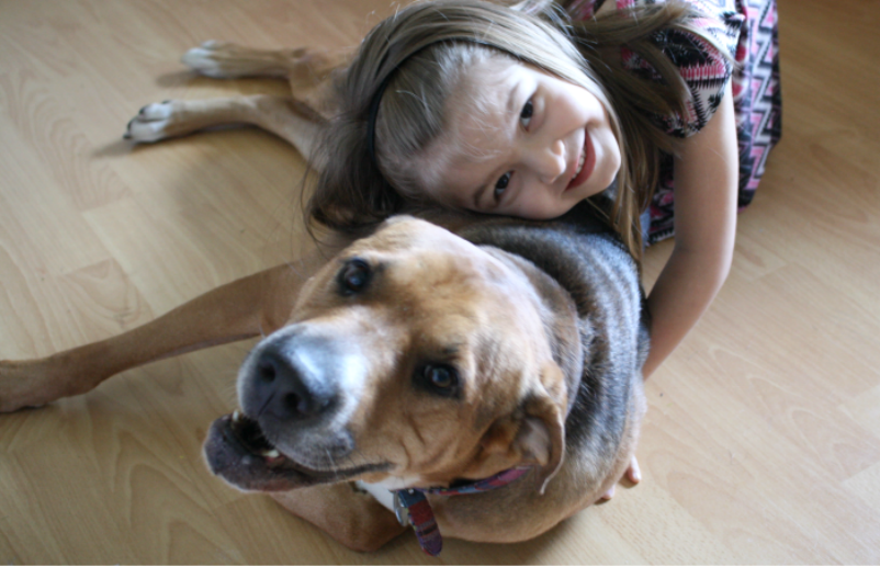 The Perks of Pets for Preschoolers
