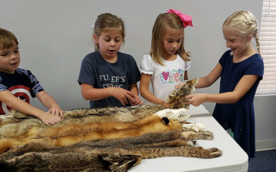 kids and animal pelts science class