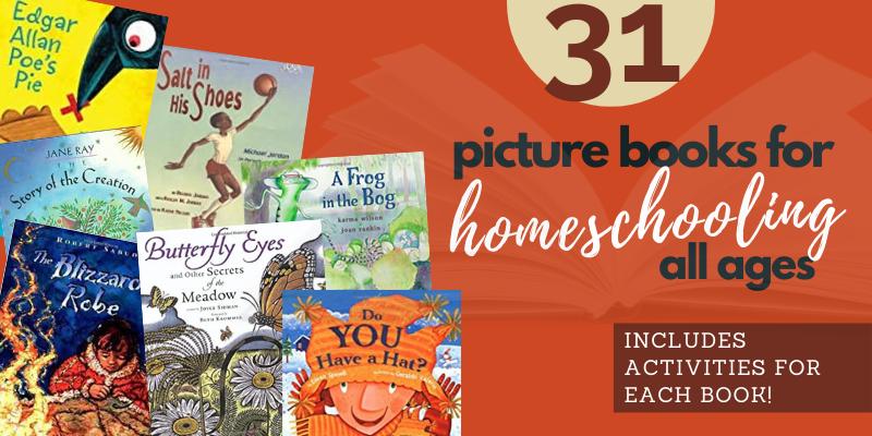 Noah's Ark Homeschool Picture Book And Activities